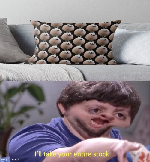 The Eggdog pillow | image tagged in i'll take your entire stock,egg,dog,memes,meme,pillow | made w/ Imgflip meme maker