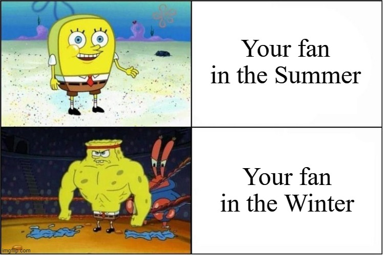 Weak vs Strong Spongebob |  Your fan in the Summer; Your fan in the Winter | image tagged in weak vs strong spongebob | made w/ Imgflip meme maker