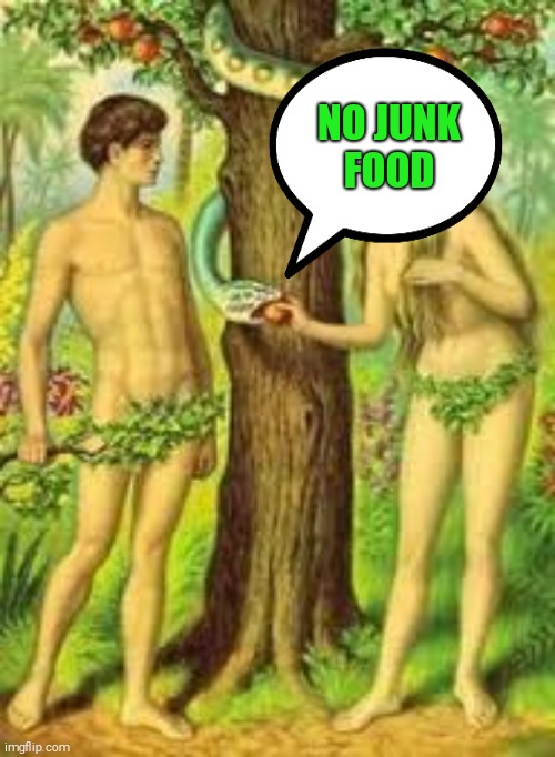 Adam and Eve |  NO JUNK FOOD | image tagged in adam and eve | made w/ Imgflip meme maker