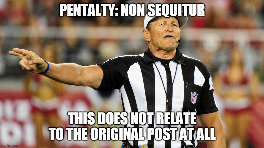 Non Sequitur |  PENTALTY: NON SEQUITUR; THIS DOES NOT RELATE TO THE ORIGINAL POST AT ALL | image tagged in logical fallacy referee | made w/ Imgflip meme maker