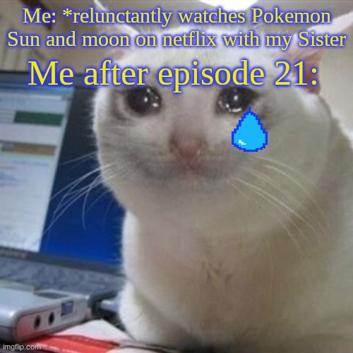 how could you do this to us, the happy and loving fans! (Spoiler: Stoutland dies) |  Me after episode 21:; Me: *relunctantly watches Pokemon Sun and moon on netflix with my Sister | image tagged in crying cat,pokemon,sad,spoilers | made w/ Imgflip meme maker