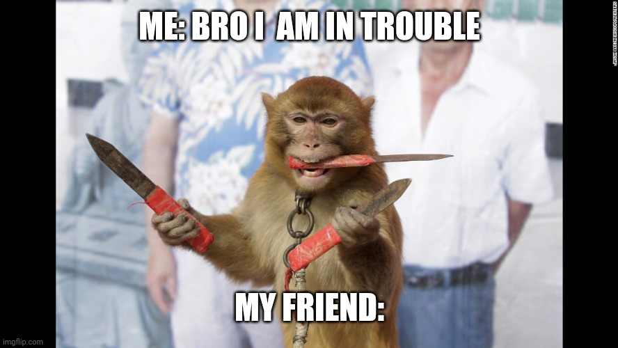 Monkey with Knives |  ME: BRO I  AM IN TROUBLE; MY FRIEND: | image tagged in monkey | made w/ Imgflip meme maker