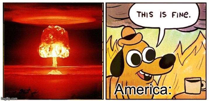 This Is Fine |  America: | image tagged in memes,this is fine | made w/ Imgflip meme maker