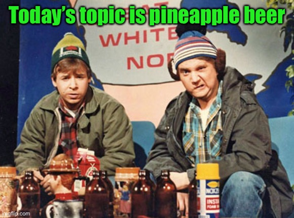 Great White North | Today's topic is pineapple beer | image tagged in great white north | made w/ Imgflip meme maker
