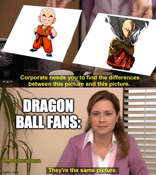 Hage |  DRAGON BALL FANS: | image tagged in they are the same picture,dbz,dbz meme,anime,animeme,animememe | made w/ Imgflip meme maker