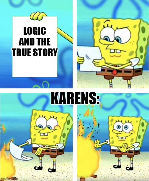 Spongebob Burning Paper |  LOGIC AND THE TRUE STORY; KARENS: | image tagged in spongebob burning paper | made w/ Imgflip meme maker
