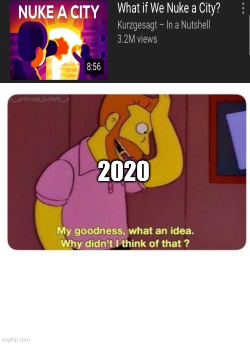 Why Didnt I Think Of That? |  2020 | image tagged in why didnt i think of that | made w/ Imgflip meme maker