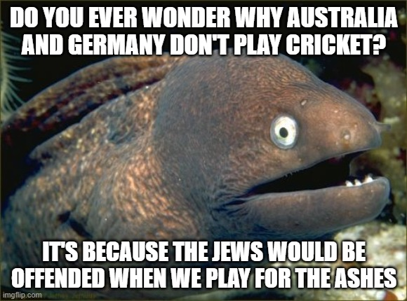 Bad Joke Eel |  DO YOU EVER WONDER WHY AUSTRALIA AND GERMANY DON'T PLAY CRICKET? IT'S BECAUSE THE JEWS WOULD BE OFFENDED WHEN WE PLAY FOR THE ASHES | image tagged in memes,bad joke eel,cricket,holocaust,jews,black | made w/ Imgflip meme maker