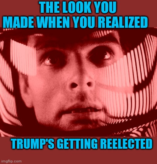 VOTE TRUMP 2020 |  THE LOOK YOU MADE WHEN YOU REALIZED; TRUMP'S GETTING REELECTED | image tagged in memes,oh my god orange | made w/ Imgflip meme maker