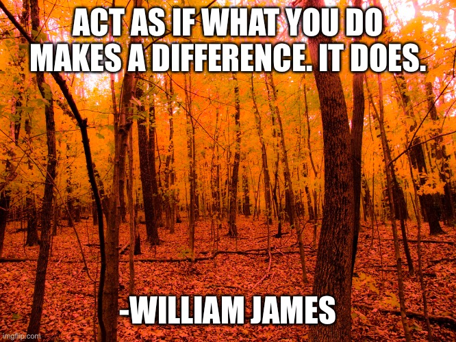 ACT AS IF WHAT YOU DO MAKES A DIFFERENCE. IT DOES. -WILLIAM JAMES | image tagged in memes,motivational | made w/ Imgflip meme maker