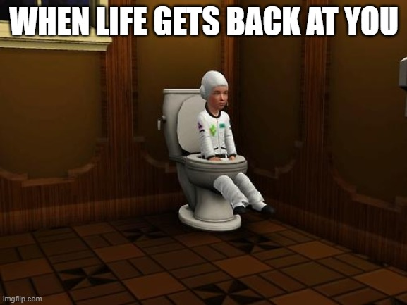 when life gets back at you |  WHEN LIFE GETS BACK AT YOU | image tagged in sims,life | made w/ Imgflip meme maker