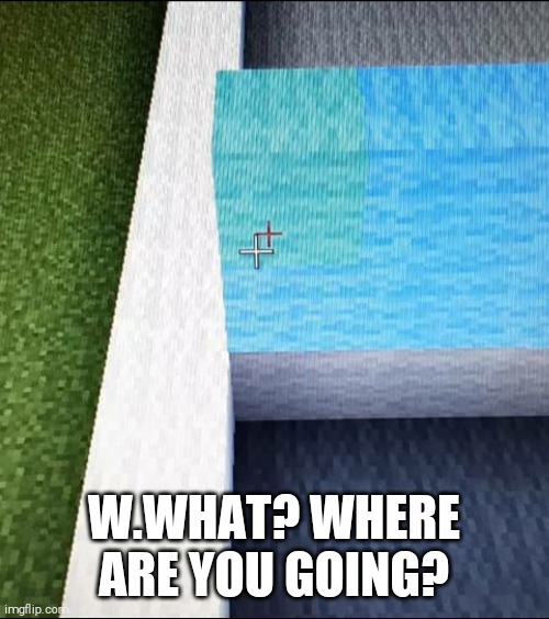 The minecraft pointer has dislocated |  W.WHAT? WHERE ARE YOU GOING? | image tagged in memes,meme,funny,minecraft,gaming | made w/ Imgflip meme maker