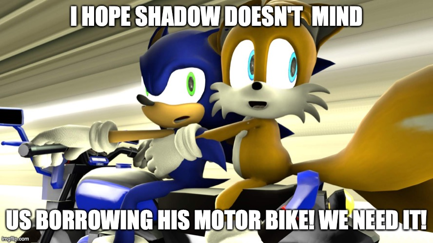 jhhhhhhhsedrftgyhuj |  I HOPE SHADOW DOESN'T  MIND; US BORROWING HIS MOTOR BIKE! WE NEED IT! | image tagged in motorbike,cats | made w/ Imgflip meme maker
