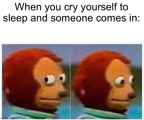 Oh no |  When you cry yourself to sleep and someone comes in: | image tagged in memes,monkey puppet,sleep | made w/ Imgflip meme maker