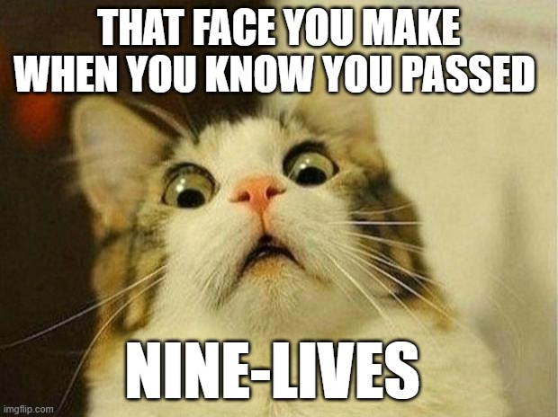 Scared Cat Keep Going |  THAT FACE YOU MAKE WHEN YOU KNOW YOU PASSED; NINE-LIVES | image tagged in memes,scared cat,cats,cat,funny cat memes,derp cat | made w/ Imgflip meme maker
