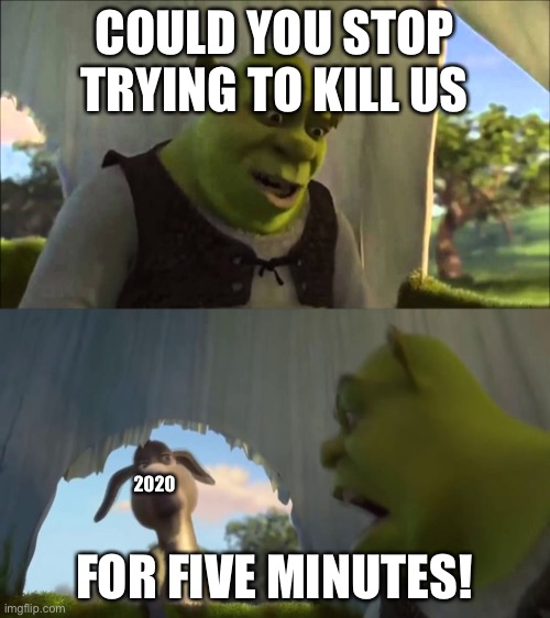 Shrek |  COULD YOU STOP TRYING TO KILL US; FOR FIVE MINUTES! 2020 | image tagged in 2020,shrek | made w/ Imgflip meme maker