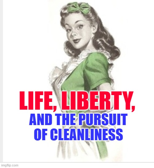 Housewife Independence |  LIFE, LIBERTY, AND THE PURSUIT OF CLEANLINESS | image tagged in 50's housewife,independence day,4th of july,funny memes,america,sayings | made w/ Imgflip meme maker
