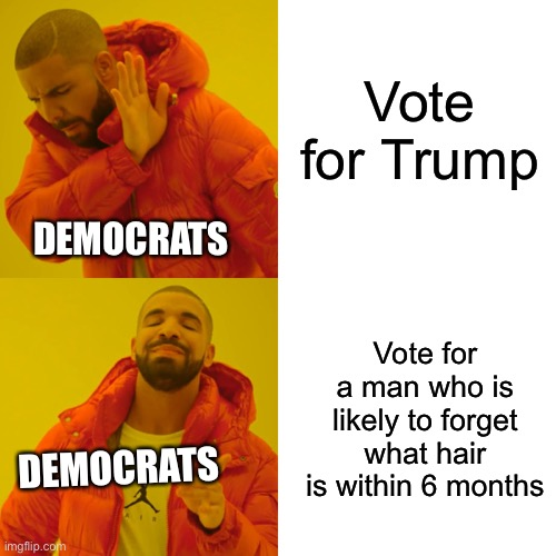 How Democrats vote in 2020 |  Vote for Trump; DEMOCRATS; DEMOCRATS; Vote for a man who is likely to forget what hair is within 6 months | image tagged in memes,drake hotline bling,trump,biden | made w/ Imgflip meme maker