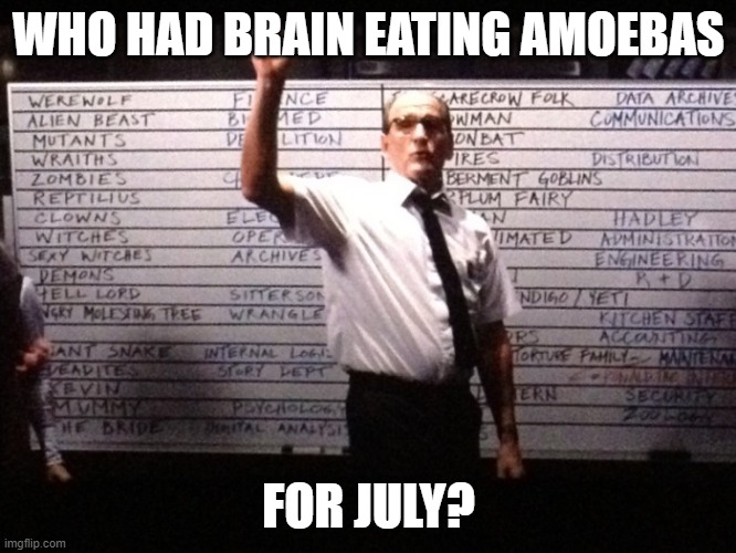 Who had X for Y? |  WHO HAD BRAIN EATING AMOEBAS; FOR JULY? | image tagged in who had x for y | made w/ Imgflip meme maker