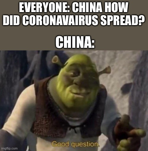 China |  EVERYONE: CHINA HOW DID CORONAVAIRUS SPREAD? CHINA: | image tagged in shrek good question,china,memes,shrek,fun,covid | made w/ Imgflip meme maker