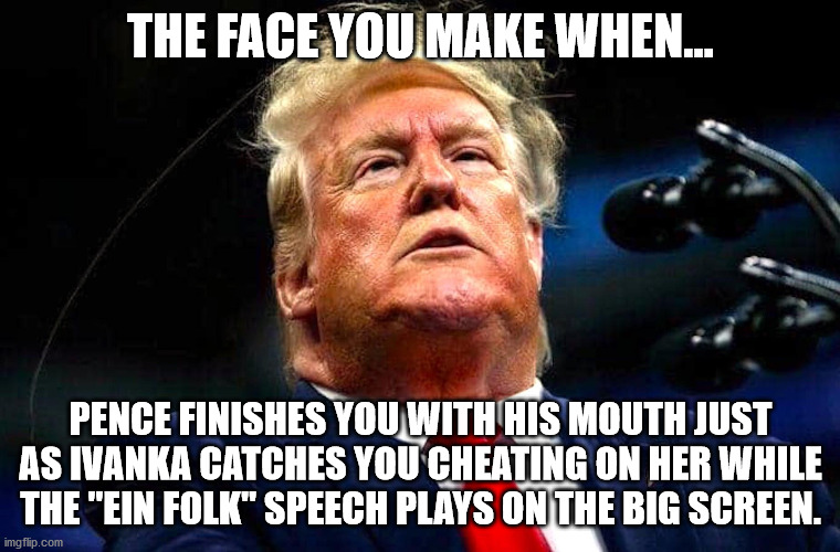 "Trump! |  THE FACE YOU MAKE WHEN... PENCE FINISHES YOU WITH HIS MOUTH JUST AS IVANKA CATCHES YOU CHEATING ON HER WHILE THE ""EIN FOLK"" SPEECH PLAYS ON THE BIG SCREEN. 