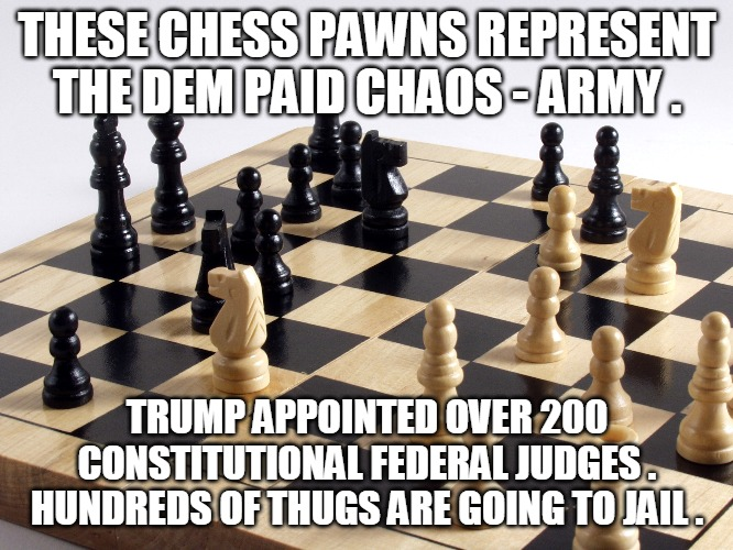 Chaos Army |  THESE CHESS PAWNS REPRESENT THE DEM PAID CHAOS - ARMY . TRUMP APPOINTED OVER 200 CONSTITUTIONAL FEDERAL JUDGES . HUNDREDS OF THUGS ARE GOING TO JAIL . | image tagged in pawn,chaos,army,judge,thug,jail | made w/ Imgflip meme maker