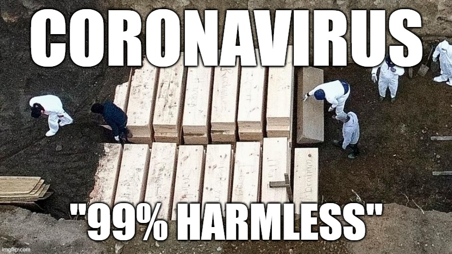"After Half-a-Million Deaths, Trump Says Coronavirus is 99% Harmless |  CORONAVIRUS; ""99% HARMLESS"" 