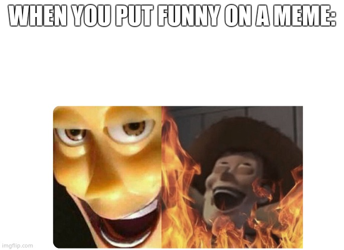 Satanic Woody |  WHEN YOU PUT FUNNY ON A MEME: | image tagged in satanic woody,funny,demotivationals | made w/ Imgflip meme maker