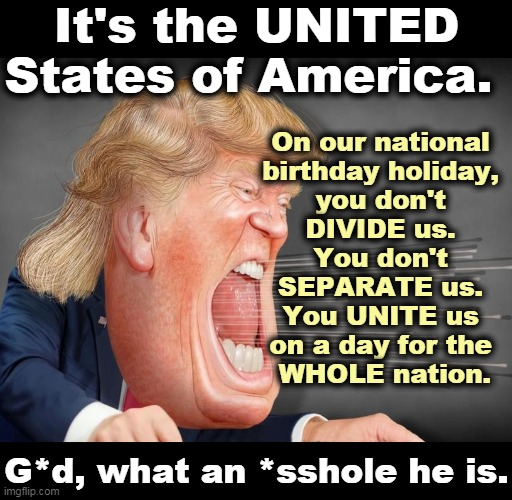 Did you want a president who would break stuff? Congratulations, Trump broke the Fourth of July. |  It's the UNITED States of America. On our national  birthday holiday,  you don't  DIVIDE us.  You don't  SEPARATE us.  You UNITE us  on a day for the  WHOLE nation. G*d, what an *sshole he is. | image tagged in trump,division,selfishness,hatred,nasty,incompetence | made w/ Imgflip meme maker