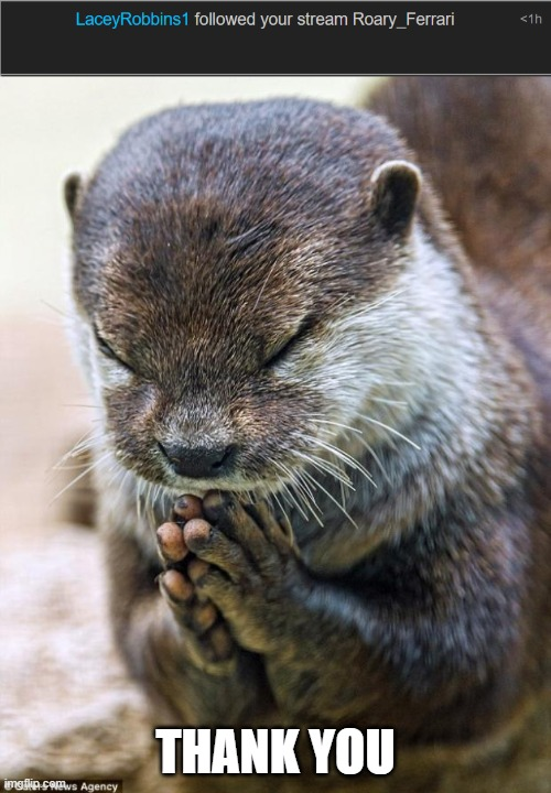 thxxxxxxxxxxxxx |  THANK YOU | image tagged in thank you lord otter | made w/ Imgflip meme maker