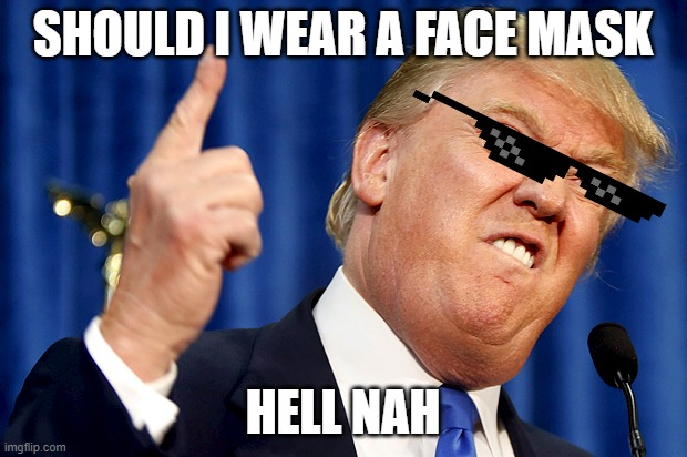 NO FACE MASK |  SHOULD I WEAR A FACE MASK; HELL NAH | image tagged in donald trump | made w/ Imgflip meme maker