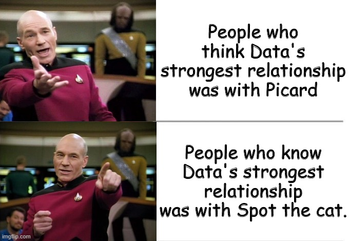 Captain Picard Drake meme |  People who think Data's strongest relationship was with Picard; People who know Data's strongest relationship was with Spot the cat. | image tagged in captain picard drake meme | made w/ Imgflip meme maker