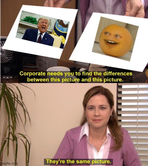 basically the same | image tagged in memes,they're the same picture | made w/ Imgflip meme maker