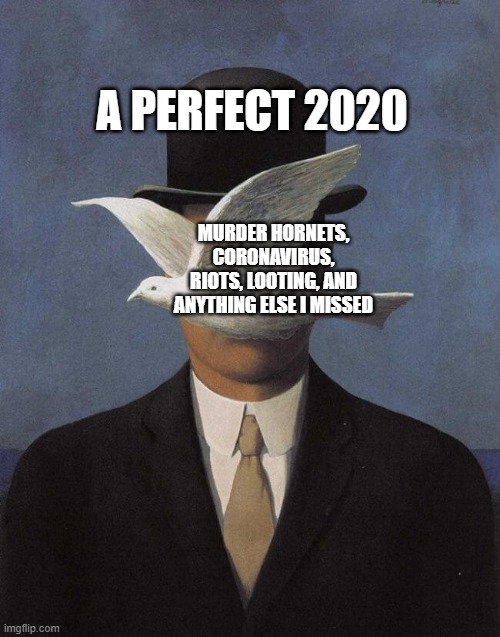 2020 is a big oof, folks |  A PERFECT 2020; MURDER HORNETS, CORONAVIRUS, RIOTS, LOOTING, AND ANYTHING ELSE I MISSED | image tagged in memes,funny,2020,coronavirus,murder hornets,looting | made w/ Imgflip meme maker