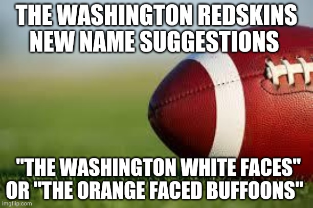 "football field |  THE WASHINGTON REDSKINS NEW NAME SUGGESTIONS; ""THE WASHINGTON WHITE FACES"" OR ""THE ORANGE FACED BUFFOONS"" 