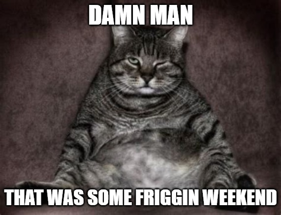 Damn Man |  DAMN MAN; THAT WAS SOME FRIGGIN WEEKEND | image tagged in cats,memes,fun,funny,weekend,2020 | made w/ Imgflip meme maker