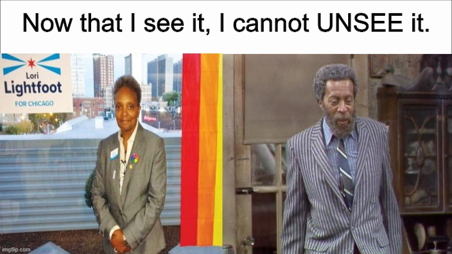 Has anyone else noticed? |  Now that I see it, I cannot UNSEE it. | image tagged in memes,lori lightfoot,sanford and son,separated at birth | made w/ Imgflip meme maker