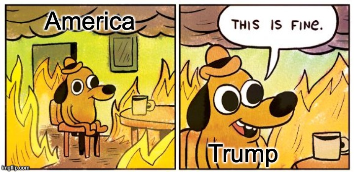 This Is Fine |  America; Trump | image tagged in memes,this is fine | made w/ Imgflip meme maker