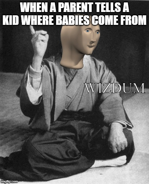 Wizdum |  WHEN A PARENT TELLS A KID WHERE BABIES COME FROM | image tagged in wizdum,memes | made w/ Imgflip meme maker