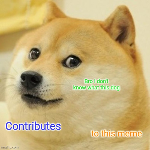 Doge Meme |  Bro I don't know what this dog; Contributes; to this meme | image tagged in memes,doge | made w/ Imgflip meme maker