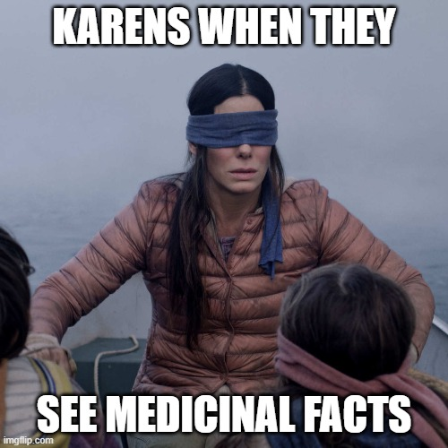Bird Box Meme |  KARENS WHEN THEY; SEE MEDICINAL FACTS | image tagged in memes,bird box,karen,medical | made w/ Imgflip meme maker