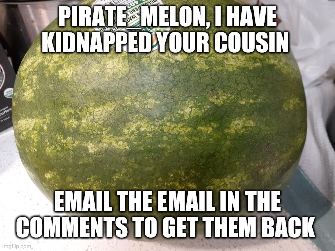 I have |  PIRATE_MELON, I HAVE KIDNAPPED YOUR COUSIN; EMAIL THE EMAIL IN THE COMMENTS TO GET THEM BACK | image tagged in email me,i wont care,this is my email | made w/ Imgflip meme maker