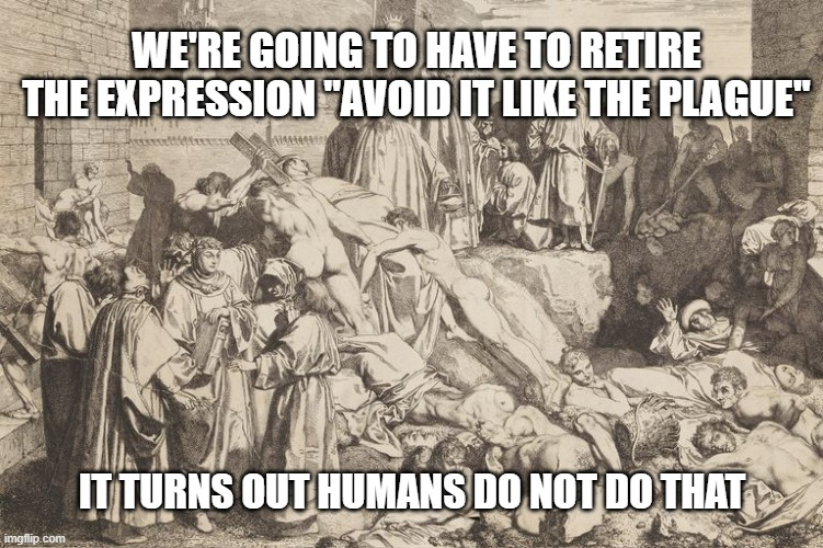 "Avoid it like the plague you say..... |  WE'RE GOING TO HAVE TO RETIRE THE EXPRESSION ""AVOID IT LIKE THE PLAGUE""; IT TURNS OUT HUMANS DO NOT DO THAT 