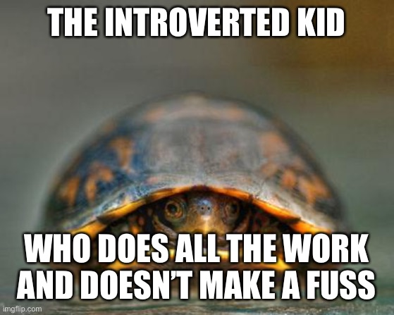 introverts | THE INTROVERTED KID WHO DOES ALL THE WORK AND DOESN'T MAKE A FUSS | image tagged in introverts | made w/ Imgflip meme maker