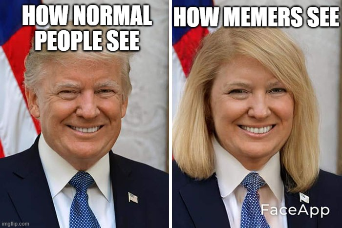 Milady Trump on Faceapp! |  HOW MEMERS SEE; HOW NORMAL PEOPLE SEE | image tagged in donald trump,faceapp,memes,memers | made w/ Imgflip meme maker