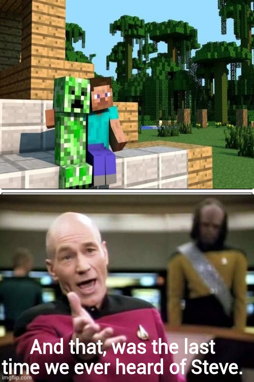 Minecraft |  And that, was the last time we ever heard of Steve. | image tagged in comics,blank comic panel 2x2,minecraft,picard wtf | made w/ Imgflip meme maker
