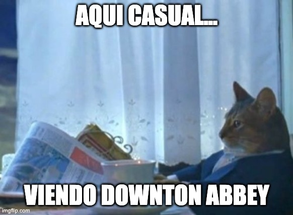 uptown cat |  AQUI CASUAL... VIENDO DOWNTON ABBEY | image tagged in memes,i should buy a boat cat | made w/ Imgflip meme maker