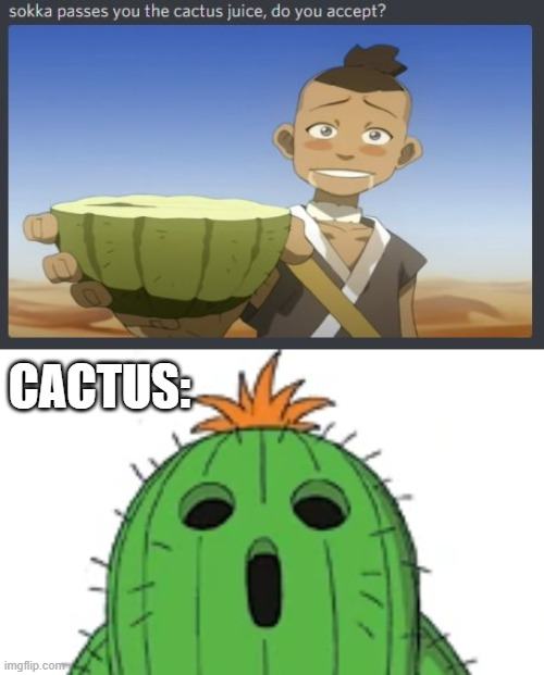 Bent Sokka |  CACTUS: | image tagged in avatar the last airbender | made w/ Imgflip meme maker