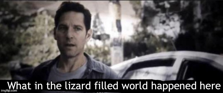 What in the lizard filled world happened here | image tagged in what in the lizard filled world happened here | made w/ Imgflip meme maker