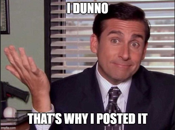 Michael Scott | I DUNNO THAT'S WHY I POSTED IT | image tagged in michael scott | made w/ Imgflip meme maker